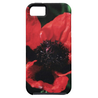 Papery Red Poppy iPhone SE/5/5s Case