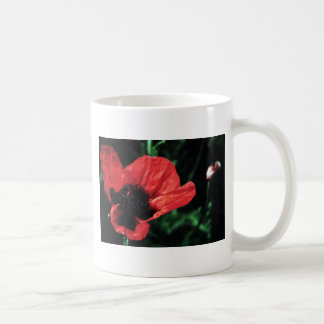 Papery Red Poppy Coffee Mugs