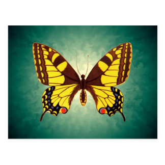 Papilio machaon Butterfly Postcard