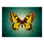 Papilio machaon Butterfly Print