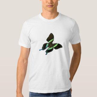 Papilio Poleras