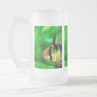 Papiliochromis ramirezi 16 oz frosted glass beer mug