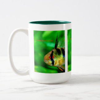 Papiliochromis ramirezi Two-Tone coffee mug