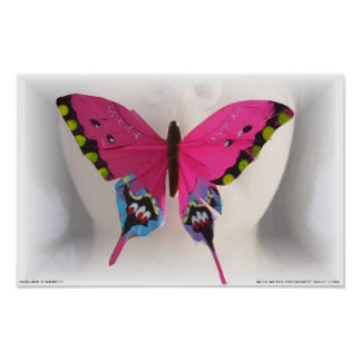 Papillion Symmetry Poster