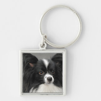 papillon-17.jpg Silver-Colored square keychain