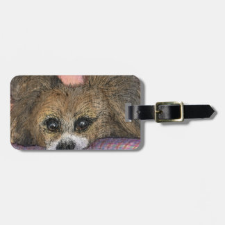 Papillon butterfly dog waiting luggage tag