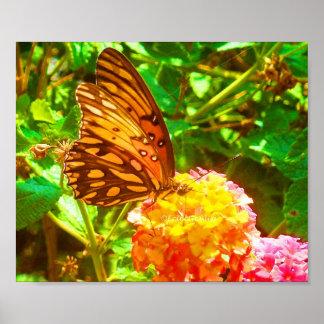 Papillon (Butterfly) Poster