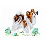 Papillon Dog & Butterfly Eye to Eye Post Card