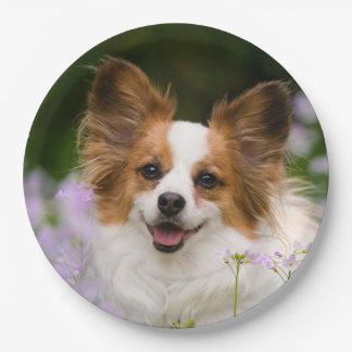Papillon Dog Cute Romantic Portrait, Happy Party Paper Plate
