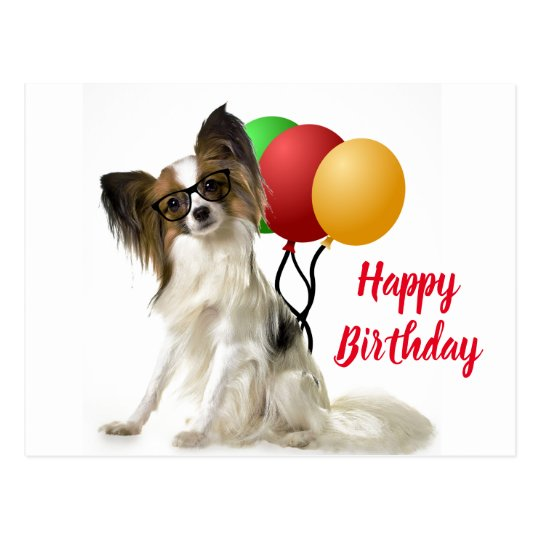 Papillon Dog Postcard With Birthday Greeting