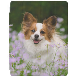 Papillon Dog Romantic Portrait, Gadget-Case iPad Smart Cover