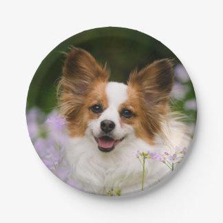 Papillon Dog Romantic Portrait, party Paper Plate