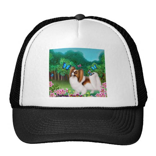 Papillon in Garden Hat