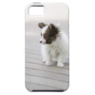 Papillon iPhone SE/5/5s Case