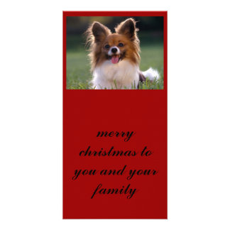Papillon, merry christmas to you and your family card