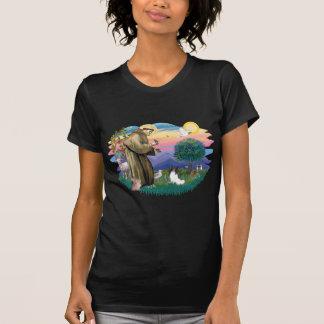 Papillon Camisetas