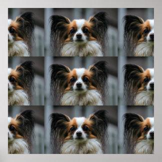 Papillon Puppy Dog Poster