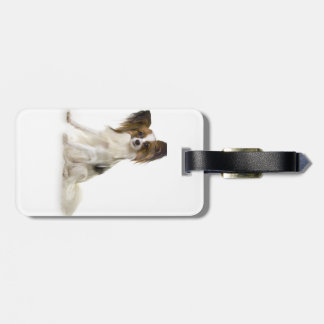 Papillon Puppy interrogative Bag Tag