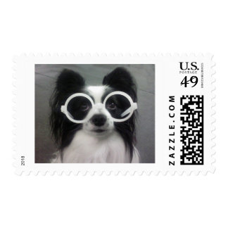 Papillon Puppy Postage Stamp