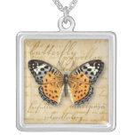Papillon redacta el collar