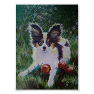 Papillon With Crabapples Poster