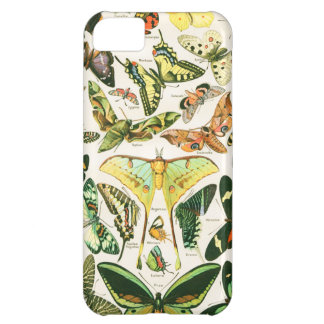Papillons Case For iPhone 5C