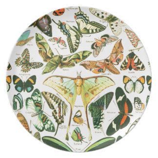 Papillons Plate