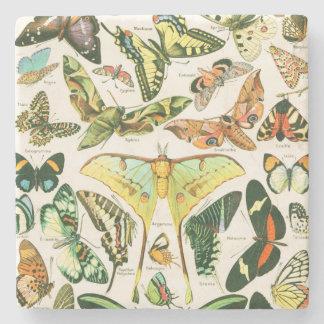 Papillons Posavasos De Piedra