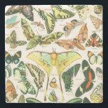 """Papillons Stone Coaster<br><div class=""""desc"""">From an 1843 study of butterflies</div>"""
