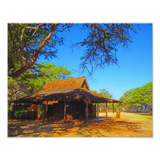 Papohaku Pavilion Photo Print