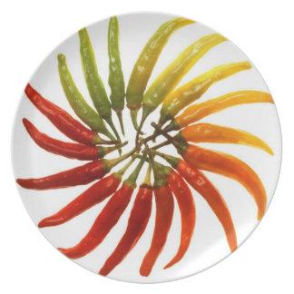 Paprika Melamine Plate