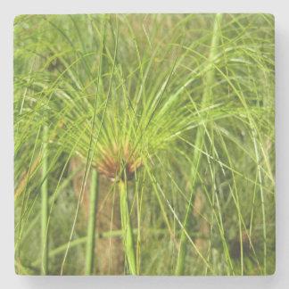 Papyrus Grass Stone Coaster