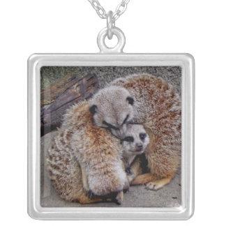 Paquete adorable de Meerkats de foto de la natural Colgante Cuadrado