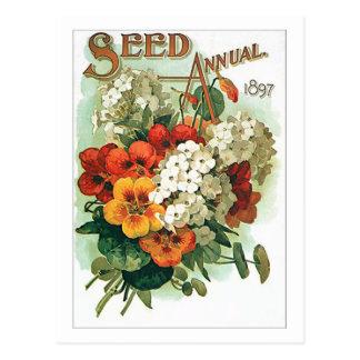 Paquete clasificado vintage de la semilla de flore tarjeta postal