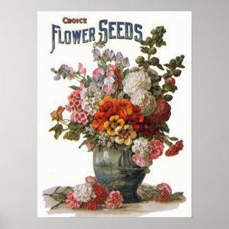 Paquete clasificado vintage de la semilla de las p póster