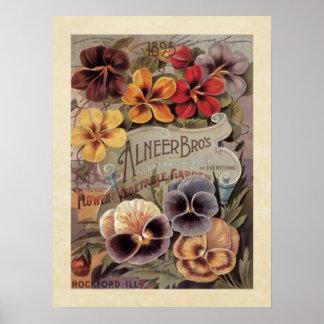 Paquete clasificado vintage de la semilla de los p póster