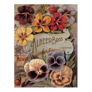 Paquete clasificado vintage de la semilla de los p postales