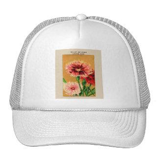 Paquete de la semilla de flor del clavel de China Gorra