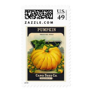 Paquete de la semilla de la calabaza de la tarjeta sellos