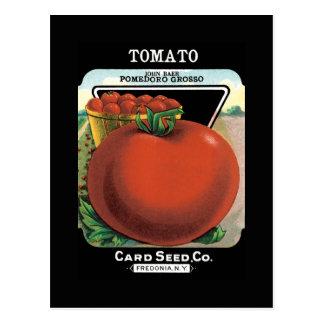 Paquete de la semilla del tomate postal