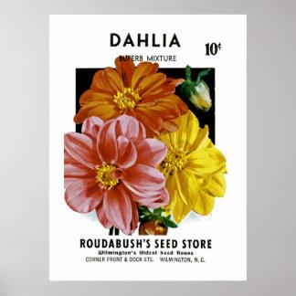 Paquete de la semilla del vintage de la dalia póster