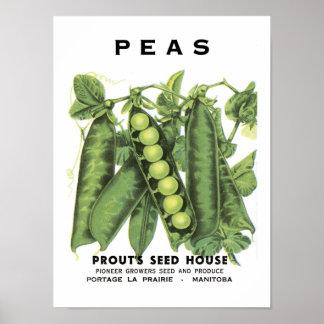 Paquete de la semilla del vintage de los guisantes póster
