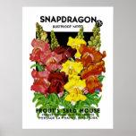 Paquete de la semilla del vintage de Snapdragon Impresiones