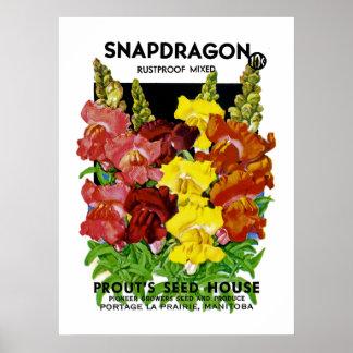 Paquete de la semilla del vintage de Snapdragon Póster