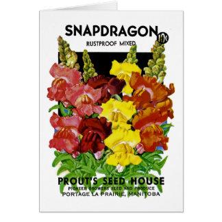 Paquete de la semilla del vintage de Snapdragon Tarjeta De Felicitación