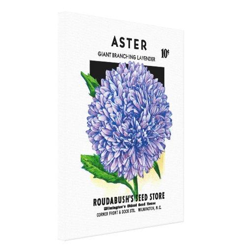 Paquete de la semilla del vintage del aster impresión en lienzo