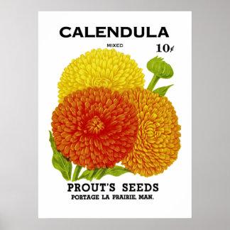 Paquete de la semilla del vintage del Calendula Poster