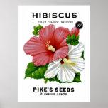 Paquete de la semilla del vintage del hibisco impresiones