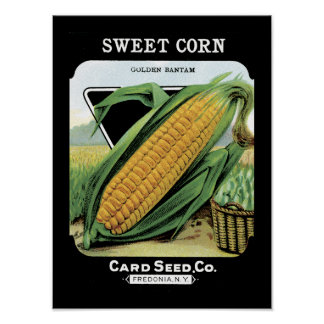 Paquete de la semilla del vintage del maíz dulce impresiones
