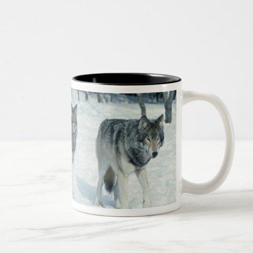 Paquete de lobos en el borde del bosque nevoso taza de café de dos colores